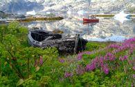 Sur Mesure au Groenland :