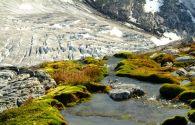 Croisière au Groenland : Groenland, Terre Neuve et Labrador