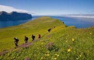 Sur Mesure en Islande : Rando libre entre îles et fjords