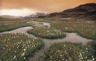Sur Mesure en Islande : L'Islande en liberté