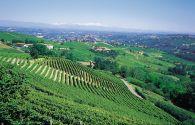 Sur Mesure en Italie : Balade piémontaise