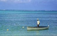 Sur Mesure à Maurice : Rodrigues & Maurice, les petites Mascareignes