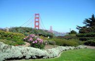 Séjour au États-Unis : Séjour à San Francisco et la Vallée des vins Californiens