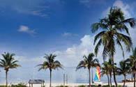 Sur Mesure au États-Unis : Floride Tropicale