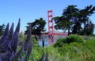 Séjour au États-Unis : Séjour San Francisco